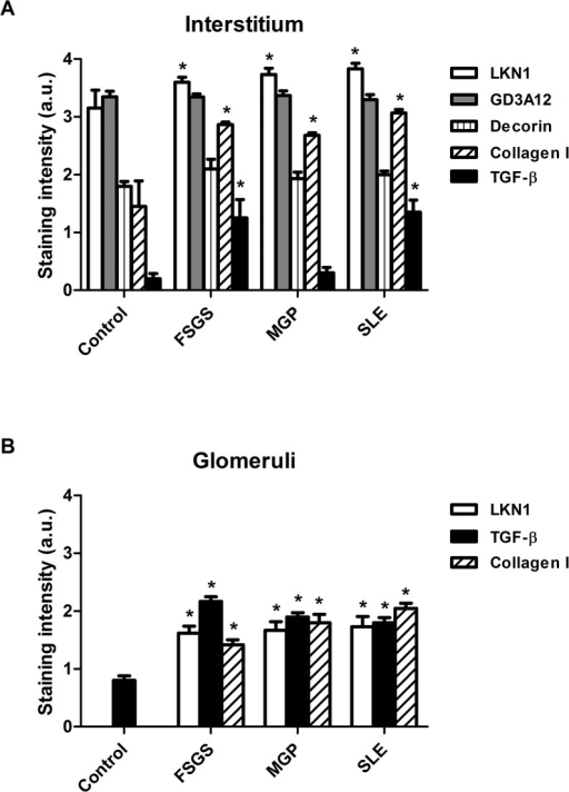 Semi-quantitative analysis of the expression the 4/2,4-di-O-sulfated and IdoA-Gal-NAc4S DS domains defined by LKN1 and GD3A12, type I collagen, decorin and TGF-β in the interstitium (A) and glomeruli (B) of patients with FSGS, MGP and SLE.Staining intensities of the 4/2,4-di-O-sulfated and IdoA-Gal-NAc4S DS domains defined by LKN1 and GD3A12 respectively and of type I collagen, decorin and transforming growth factor beta (TGF-β) were scored using a scale of 0–4 and revealed a significantly increased expression of the 4/2,4-di-O-sulfated DS domain and type I collagen in the interstitium (A) and glomeruli (B) of patients with glomerular diseases. Glomerular expression of TGF-β also was increased in patients with glomerular diseases (B), while expression of the IdoA-Gal-NAc4S DS domain and decorin was similar in the interstitium (A) of patients and controls. *P<0.05 vs control.