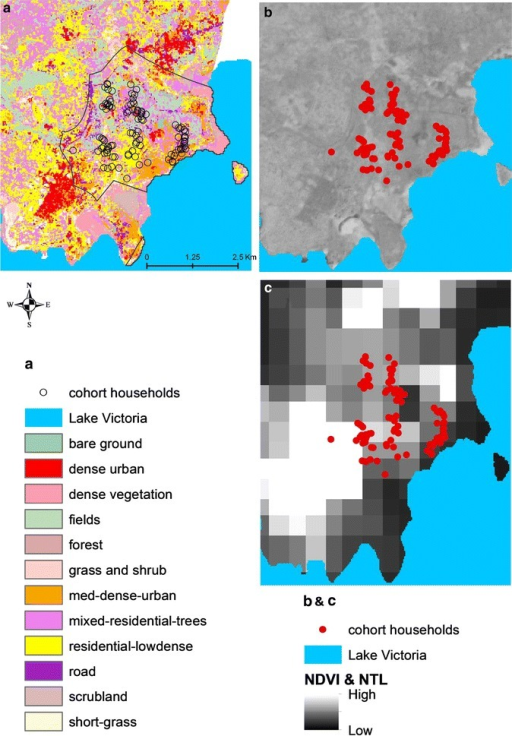Distribution of three urbanicity metrics across the three sites, based on the frequency distribution of individual metric values within a 100 m buffer around households participating in the cohort and entomology study in each site. a Land cover classification in Walukuba at 30 m spatial resolution overlaid with the participating study households. b NDVI in Walukuba at 6 m spatial resolution. c Satellite-derived night-time light brightness across Walukuba overlaid with the participating study households