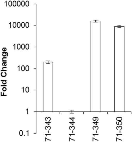 Quantitative RT-PCR analysis of gene expression of the 71cR gene in selected Neurospora crassa transformants.Each sample was normalized against the tubulin reference gene, and fold-change relative to expression of the lowest expressing Neurospora crassa transformant was calculated according to the 2(-ΔΔC(T)) method. Error bars represent 95% confidence intervals.