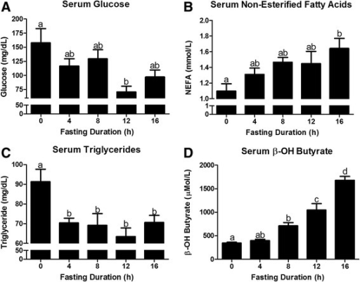 Changes in serum metabolites in response to fasting duration. Serum concentration of a glucose, b non-esterified fatty acid (NEFA), c triacylglycerol (TAG), and d β-OH Butyrate in mice that were fasted for 0, 4, 8, 12, and 16 h. a,b,c,dBars that do not share a common letter differ significantly (P < 0.05; n = 6)