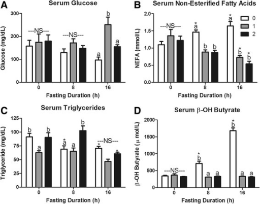 Serum metabolites in response to re-feeding. Serum a glucose, b non-esterified fatty acids (NEFA), c triacylglycerol (TAG), and d β-OH butyrate concentrations in mice fasted for 0, 8, or 16 h then allowed to re-feed for 0 (white bars), 1 (grey bars), or 2 (black bars) hours. *Denotes a significant difference from 0 h fasting within re-feeding duration (P < 0.05). a,bBars that do not share a common letter differ significantly within fasting duration (P < 0.05; n = 3–6). NS, no significant differences within a fasting duration (P > 0.05)