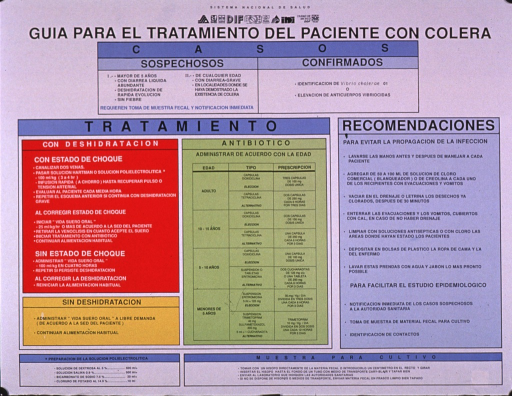 <p>Multicolor poster with black and white lettering.  Publisher information and several logos at top of poster.  Title below.  Poster is all text, divided into several sections addressing treatment of those with and without dehyrdration, types of antibiotic treatment depending on patient's age, and recommendations for health workers to avoid spreading the infection, etc.</p>