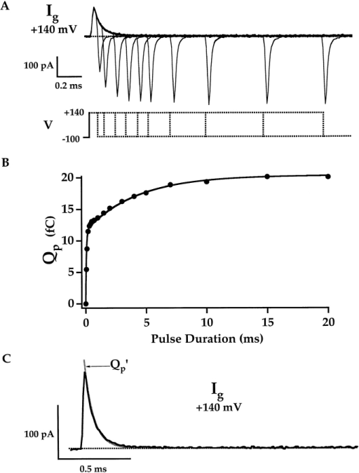 Slow component of gating-charge movement. A family of Ig was evoked at +140 mV in response to pulses of different duration (0.06–20 ms). (A) Plots the records for 0.06–2-ms pulse duration. The remaining records are shown in Fig. 6 A. (B) QOFF was determined by integrating IgOFF for 3 ms after each voltage pulse and is plotted versus pulse duration (Qp). Qp(t) is fit by a double-exponential function with time constants τgFast = 63 μs and τgSlow = 4.22 ms. τgFast was determined by fitting IgON, and QpFast was set equal to Qfast (11.67 fF) determined as in Fig. 3 D. (C) The time derivative of the fit to Qp(t) (Qp′, dashed line) superimposes on the time course of IgON at +140 mV.