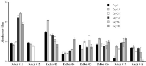 Immunogenicity of plant extracts. Analysis of serum from New Zealand white rabbits #11 and #12 immunized with A. thaliana-derived HPV-11 L1 NLS- VLPs and rabbits #13 to #18 immunized with N. tabacum-derived HPV-11 L1 NLS- VLPs. Rabbits were immunized on days 1, 28 and 56 and serum from days 1, 15, 28, 42, 56 and 70 post injection was tested by ELISA in wells coated with 0.4 μg insect cell-derived HPV-11 L1 NLS- VLPs. Data from rabbit #12 is incomplete as it had to be euthanized due to growth of an abscess on the neck. Error bars represent the standard deviation calculated from triplicate analysis of samples.