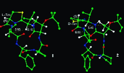 Energy-minimized conformations of MolB-R (1) and MolB-S (2).