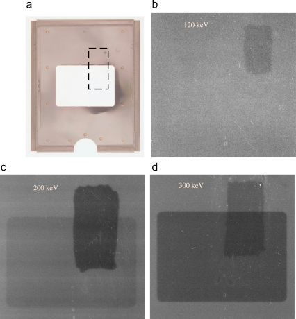 Images showing the effects at different incident electron energies of both electron backscattering from the metal film holder and from light generated within the plastic film backing due to the passage of high energy electrons in Kodak SO-163 film. (a) Photograph of a film holder showing the cut-away region in the centre. The area where black ink was applied to the back of the sheet of film to suppress light reflection is indicated by the dashed box. (b) Image taken with 120 keV electrons showing the area around the cut-away film holder. The OD in the area where the ink was applied is  lower (the developed film is lighter in the area where the ink was applied). At 120 keV there is no sign of any effects from the film holder. (c) Image taken with 200 keV electrons showing a reduction in OD of  with the ink and a  reduction where there is no film holder and so no electron backscatter from the film holder. (d) Image taken with 300 keV electrons showing a  reduction in OD with the ink and a  reduction in OD from the removal of electron backscatter.