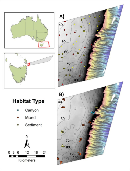 Location of the Flinders Commonwealth Marine Reserve (CMR) in Tasmania, Australia.Panels A and B show the CMR's Multiple Use Zone (IUCN VI) where survey work was conducted. The grey zone is the continental shelf (less than 200 m depth) where there was little pre-existing mapping data. Coarse bathymetry data (gridded at 250 m horizontal resolution) sourced from Geoscience Australia is shown with 10 m contour intervals overlain. The coloured area to the right shows the relatively steep and highly incised upper continental slope that had been mapped previously with multibeam sonar extending from 200 to 1500 m. A) Location of the 40 sites surveyed for habitat type in phase one of the sampling program. B) Location of the clustered sites where Baited Remote Underwater Videos (BRUVs) were deployed in phase two. Sites are coloured according to the broad habitat type: sediment (yellow); mixed, low-profile reef and sediments (red); canyon head (blue) recorded during phase one of sampling.