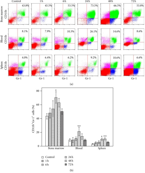 Time course of the changes in accumulation of CD11b+Gr-1+ myeloid-derived suppressor cells (MDSCs) after pseudofracture (PF) in mice. (a) Representative flow cytometric analysis and (b) graphic analysis of the percentages of CD11b+Gr-1+ cells in bone marrow cells, blood leukocytes, and splenocytes in mice at time points after injury. *P < 0.05; **P < 0.01 versus control time point. Data represent means ± SEM; n = 3 mice per time point.
