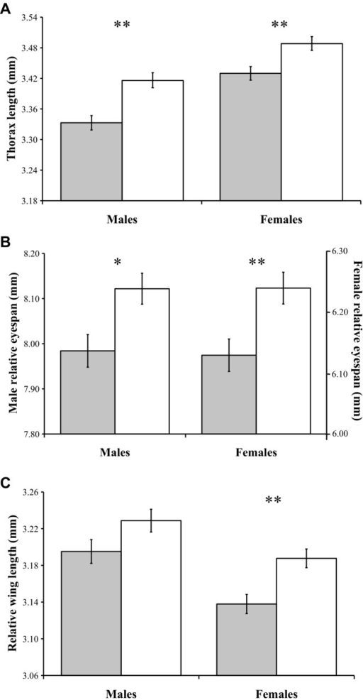 Mean (± standard error) values of inbred (gray bars) and outbred (white bars) individuals for (A) male and female thorax length, (B) male and female relative eyespan, and (C) male and female relative wing length. Asterisks denote significance level where *P < 0.050 and **P < 0.010.