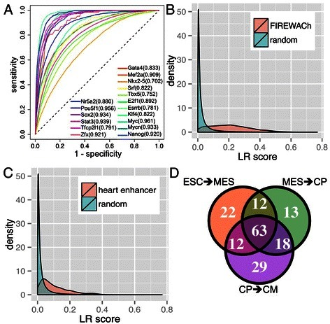 Stage specific transcription factor (TF) binding probability (LR score). (A) Performance of leave-one-TF-out cross-validation of predicting binding sites of 12 ESC TFs and 5 cardiac TFs, as measured by area under the Receiver Operating Characteristics curve (AUC). (B) Distribution of the mean LR score of ESC transcriptional regulatory modules identified by functional identification of regulatory elements within accessible chromatin (FIREWACh) and the LR score of one million randomly selected bases in the cis-region [35]. (C) Distribution of the mean LR score of heart enhancers and the LR score of one million randomly selected bases in the respective cis-regions [34]. (D) Number of significantly enriched TFs in high LR score regions (>0.1) in the three stage transition.