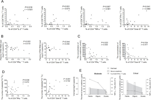 The correlations of HTNV-Gn/Gc-specific CD4+T-cell responses with CD8+T-cell immunity, viremia and clinical parameters.(A) Analysis ofthe correlations between the frequency of CD4+IL-2+T cells, CD4+IFN-γ+T cells, CD4+TNF-α+T cells, or CD4+granzyme B+T cells (x axis) and the percentage of CD8+IFN-γ+T cells (y axis) during the acute stage of HFRS. (B-D) Analysis of the relationship between the percentage of IFN-γ or granzyme B-producing CD4+T cells and the plasma HTNV RNA load (B), the serum creatinine levels (C), or platelets numbers (D) during acute HFRS. Each spot represents a single patient. (E) Longitudinal assessment of the HTNV RNA load, serum creatinine and the frequency of HTNV-Gn/Gc-specific IFN-+CD4+T cells in representative patients with moderate severity and representative patients with critical severity during the course of the disease. The line indicates the level of IFN-+CD4+T cells, white bars indicate the serum creatinine levels, and the shaded areas show the plasma HTNV RNA load of the patients tested. The Spearman's rank test was used for statistical evaluation. Gran B, granzyme B.