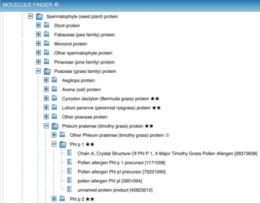 The Molecule Finder provides a hierarchical organization of proteins that allows narrowing the search to epitopes derived from a specific antigen, such as the common allergen Phl p 1. The reference proteome protein 'Phl p 1' is the parent of five individual GenPept entries for this protein from Timothy grass.