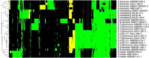 Heatmap of 647 proteins matching to the MVirDB database.Another 784 ubiquitous proteins are not shown. Colors are consistent with Fig 2; column labels are shown in S4 Fig.