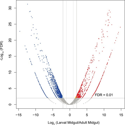 Differential gene expression analysis between larval midguts and adult midguts.The volcano plot shows the magnitude of differential expression of transcripts between larval and adult midguts. Each dot represents a transcript that had detectable expression. The horizontal line marks the threshold (FDR < 0.01) for defining a transcript as up-regulated in larval midguts (blue) or adult midguts (red), with a combined change > 4-fold.