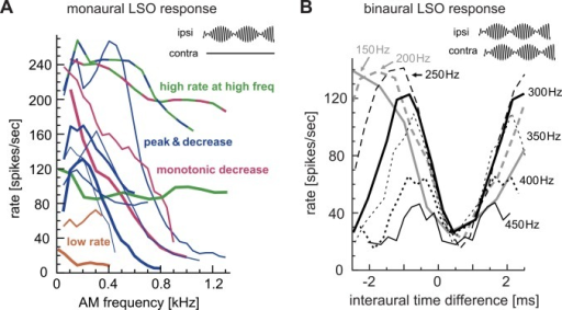 Recorded responses of cat LSO neurons to AM sounds.A: Monaural AM responses with varied modulation frequencies. Different lines are used for different LSO units. Several response types of AM-tuning were found and shown in different colors. Some units exhibited characteristics of multiple response types. B: Binaural AM responses with varied ITDs. Different line types correspond to different modulation frequencies. Adapted and redrawn from Figs 13B and 16B of Joris and Yin [36] with permission.