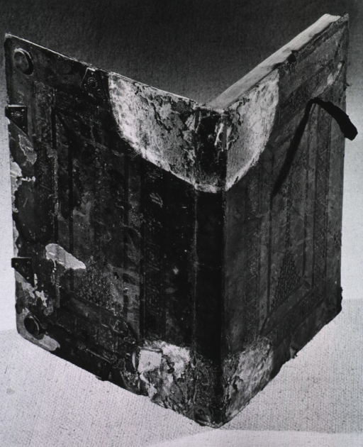 <p>View of a books deteriorating spine and cover.</p>