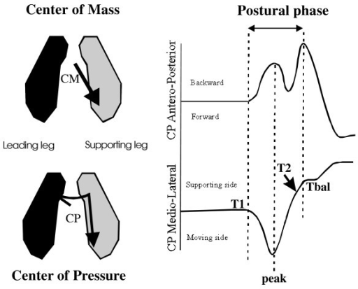Schema of the horizontal shift of the center of mass (CM) and associated center of pressure (CP) (left part) and description of the M/L and A/P CP curves (right part). The dotted lines show the time-relationships between each component. Note that the M/L thrust (T1-Peak) coincides with the first backward CP shift, and that during the unloading component of the M/L CP shift, the second backward shift occurs, which corresponds to heel off (T2).