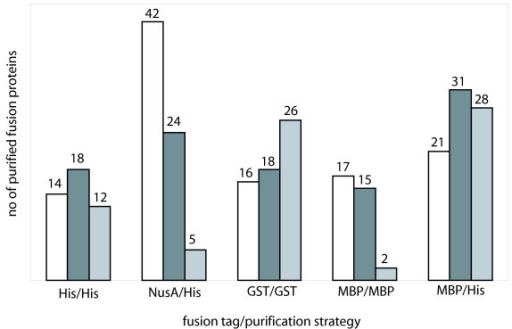 Influence of fusion tag and induction temperature on fusion protein yield. Successfully purified human fusion proteins sorted according to fusion tag and purification strategy. Protein expression was induced at 25°C (white), 30°C (dark grey) and 37°C (light grey), respectively.