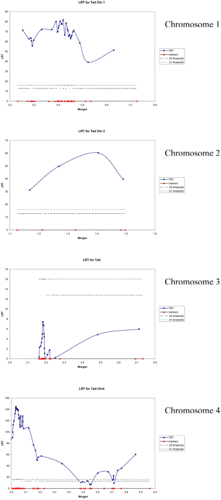 Likelihood ratio profiles for chromosomes 1, 2, 3 and 4 with adjusted threshold.