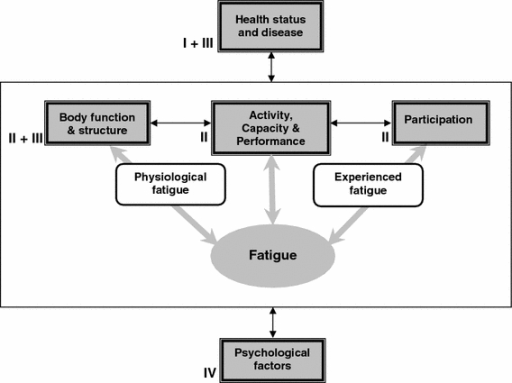 Fatigue as a multidimensional concept implemented in the World Health Organization's Classification of Functioning, Disability, and Health. The multidimensional concept of fatigue is integrated in the World Health Organization's International Classification of Functioning, Disability and Health (WHO-ICF), representing the effect of disease on body function and structure, activity and participation of the patient [1]. Both experienced fatigue and physiological fatigue have an effect on activity and participation and are in most diseases related to health status and disease severity. Psychosocial factors have an influence on fatigue and on activity and participation. The numbers indicate at which level the different treatment strategies have an effect on fatigue: I treatment of underlying disease; II rehabilitation and exercise; III pharmacotherapeutics; IV cognitive behavior therapy