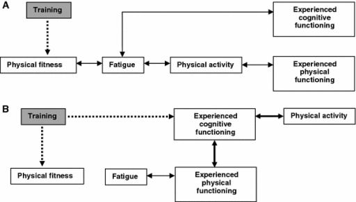 Model of fatigue in immune-mediated polyneuropathies. a Represents the hypothetical model of the mechanisms between the different domains in relation to physical training. b Is the model resulting from the correlations between the change scores of the different domains as a result of the training intervention. Thickness of lines between domains represents the strength of the relationship. Figures adapted from Ref. [12]
