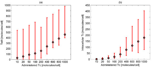 Maximum average value and variation of the number of intracellular Tc and TetA molecules for different number of administered Tc molecules. Maximum average value (black color) and variation (minimal and maximal values among the population) (red color) of the number of TetA (Figure 6a) and intracellular Tc (Figure 6b) molecules for different number of administered Tc molecules. The variation of both the number of TetA and intracellular Tc molecules is high.