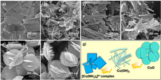 FESEM images. (a) [Cu(NH3)4]2+ complex, (b) Cu(OH)2 nanowires at room temperature, (c-d) Cu(OH)2 nanowires after reaching 40°C and 50°C, respectively. (e-f) CuO-interlaced nanodiscs at 60°C after 0 and 3 h, respectively. (g) Schematic diagram of the morphology evolution steps for CuO nanostructures.