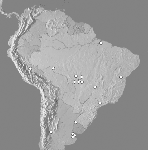 Map showing distributional records of Kaszabister ferrugineus.
