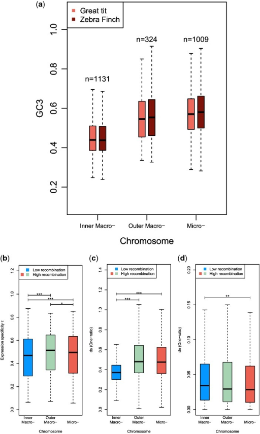 Boxplots of (a) GC content at 3rd positions (GC3),(b) expression specificity τ,(c) ds, and(d) dn for subsetsof genes according to their chromosomal positions. Whiskers aredrawn as implemented in the R-function box plot (see Materials andMethods). ,,.