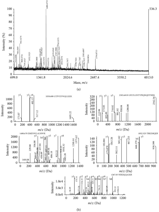(a) Peptide mass spectra of the tryptic digested peptides as obtained from MALDI TOF mass spectrometry. (b) Annotated MS/MS spectra of fragmentation of 5 peptides in MS/MS that produce mostly y and b ions. The parent m/z values and the sequence of the identified peptides are indicated.