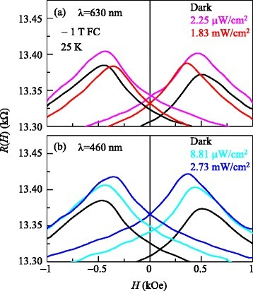 Magnetoresistance of BFO/LSMO thin film under the illumination of light. Magnetoresistance curves R(H) of BFO/LSMO thin films at 25 K after −1 T FC under light illumination at (a)λ = 630 and (b)λ = 460 nm. For comparison, R(H) curves under dark conditions are superposed in both (a) and (b).