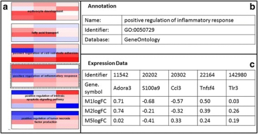 Gene Ontology Enrichment analysis for Bone Marrow Cells. a Gene Expression Data visualised on Gene Ontology Terms, (b) Back page showing the Gene Ontology Annotation for GO term GO:0050729, positive regulation of inflammatory response, (c) Back page showing the Gene expression data for the five genes (Adora3, S100a9,Ccl3, Tnfsf4, and Tlr3) found in the dataset which map to the GO class positive regulation of inflammatory response