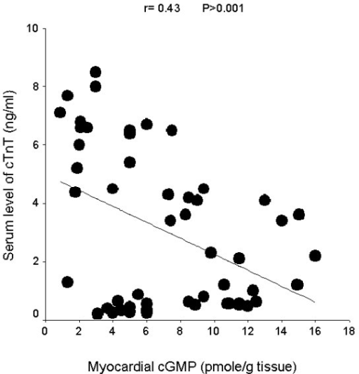 Linear regression curve for myocardial cGMP and serum level of cardiac troponin T (cTnT).