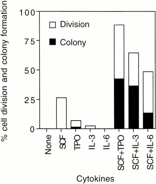 Cell division and colony formation of single CD34−KSL cells. A single-cell culture was performed in the presence of the indicated cytokines. The histogram shows the mean percentages of cells that underwent cell division at least once and of cells that gave rise to colonies during 2 wk of culture.