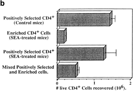 (a) Purity of CD4+ cells after enrichment with Ab and C′  (left) and positive selection on magnetic columns (right). (b) Number of  live CD4+ cells recovered on day 4.