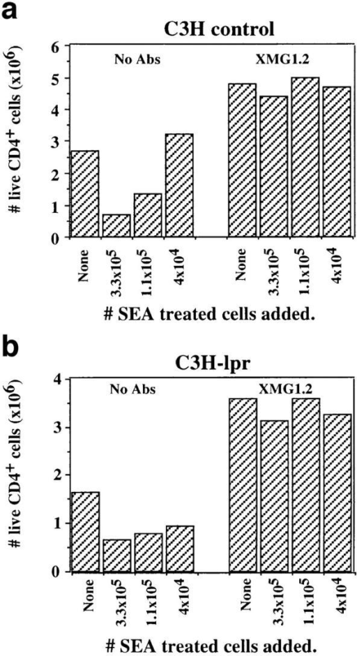 Fas-mediated death  is not required for transferable  anergy. Effector cell generation  by Fas-deficient CD4+ T cells  from C3H.MRL-lpr/lpr mice (b)  and syngeneic controls (a) was  suppressed by splenocytes from  SEA-treated AND mice in  mixed cultures and could be restored by anti–IFN-γ Ab. The  number of live CD4+ T cells recovered on day 4 is shown.