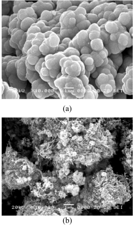 SEM microphotographs of CdSe (a) and CNT-CdSe (b) composite.