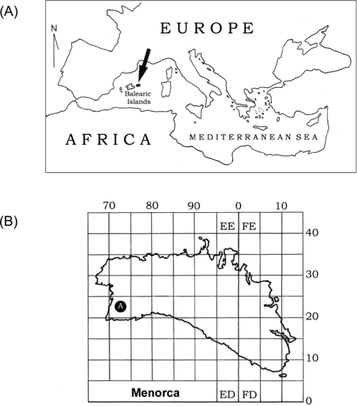 (A) Location of the Balearic Islands in the Mediterranean Sea. Menorca is in black and indicated by an arrow. (B) Detailed map of Menorca: the locality where Caenoplana coerulea was found is indicated with the letter A.