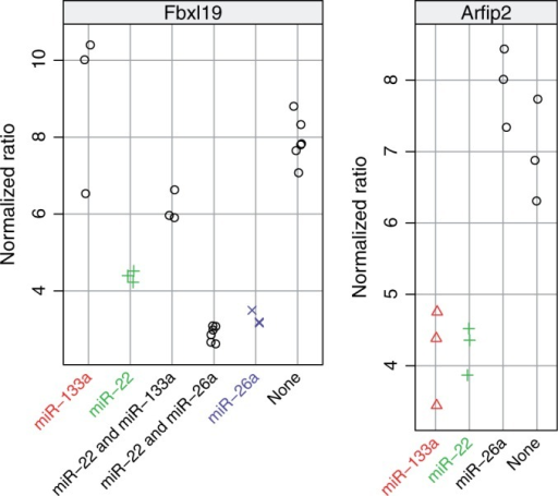 Validation of miRNA–mRNA target pairs by co-transfection in C2C12 cells for those 3′ UTRs that were predicted to have multiple binding sites. Notice that the y-axis scale of each panel is different, reflecting differences in baseline activity of the luciferase UTR reporters.