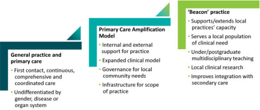 The Beacon Practice model of care for complex conditions [20].
