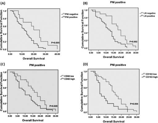 (A) Overall survival curves (OS) for the PDA patients according to the PNI incidence. The OS periods were significantly shorter for the patients with PNI than for the patients without PNI. Among the PNI+ patients, lymph node metastasis (B), CD68 high (C) and CD163 high (D) were associated with poorer prognoses. Abbreviations: PNI, peripheral neural invasion. LN, lymph node metastasis.