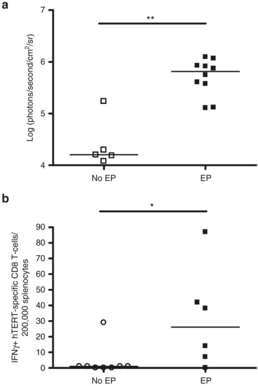 Comparison of pCMV-luc gene transfer into the dermis and INVAC-1-mediated ID vaccination efficiencies with or without EP using plate electrodes. (a) Representation of bioluminescence intensities in C57BL/6J mice 2 days after pCMV-luc ID injection followed or not by EP, n = 5 mice for pCMV-luc ID injection alone, n = 10 (from 5 mice, 2 treatments per mouse) for pCMV-luc ID injection+EP. (b) Frequency of hTERT-specific IFNγ+ CD8 T-cells detected in C57BL/6J mice vaccinated 14 days before with 25 µg of INVAC-1 followed or not by EP, n = 8 both for INVAC-1 ID injection alone or n = 6 for INVAC-1 ID injection+EP. Bars represent median values, *P < 0.05, **P < 0.01, Mann–Whitney–Wilcoxon test.