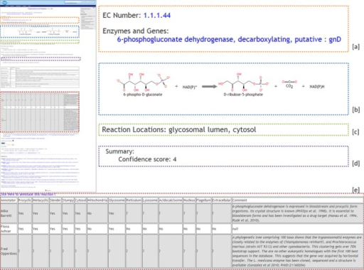 TrypanoCyc page for the 6-phosphogluconate dehydrogenase (1.1.1.44) reaction. (a) Reaction name and GeneDB link (specific to TrypanoCyc), (b) Detailed description of the reaction, (c) Localizations of the reactions as suggested by annotators, (d) Confidence score for the reaction (specific to TrypanoCyc), (e) Annotation tables displaying content of the TrypAnnot database (specific to TrypanoCyc).
