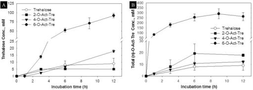 Uptake of acetylated trehalose in hepatocytes.(A) Intracellular accumulation of trehalose, and (B) intracellular accumulation of (n)-O-Ac-Tre, after incubation with 30 mM concentration of trehalose, 2-, 4-, and 6-O-Ac-Tre. 8-O-Ac-Tre was not studied as it was not water soluble. Error bars represent SD (n = 3). (* denote p>0.05 and # denote p<0.05 between respective groups).