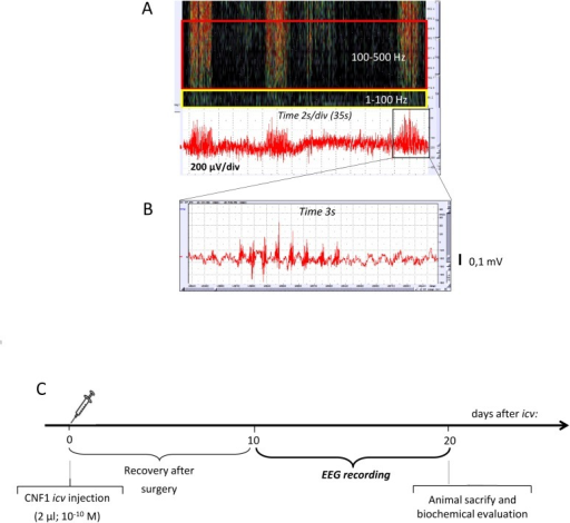 Frequency-and-time domain analysis procedures and exper | Open-i