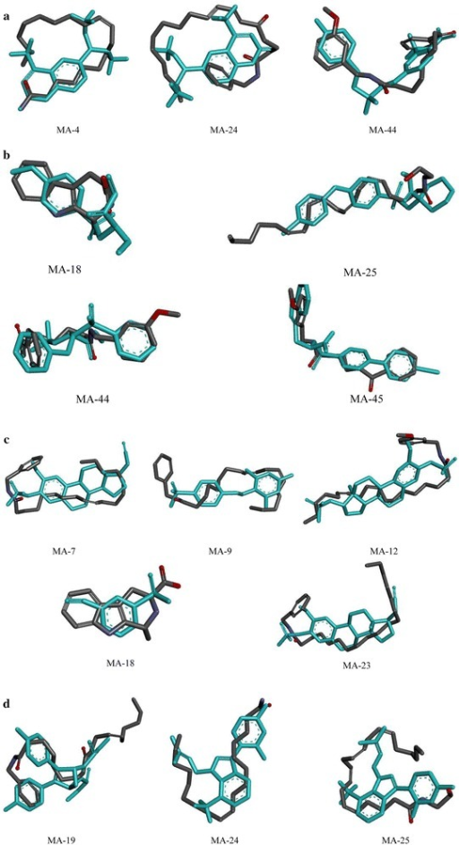 Compounds from maca align with natural ligands from PDB structure (light blue) by WEGA (a matrix metalloproteinases; b androgen receptor; c carbonic anhydrase II; d estrogen receptor)