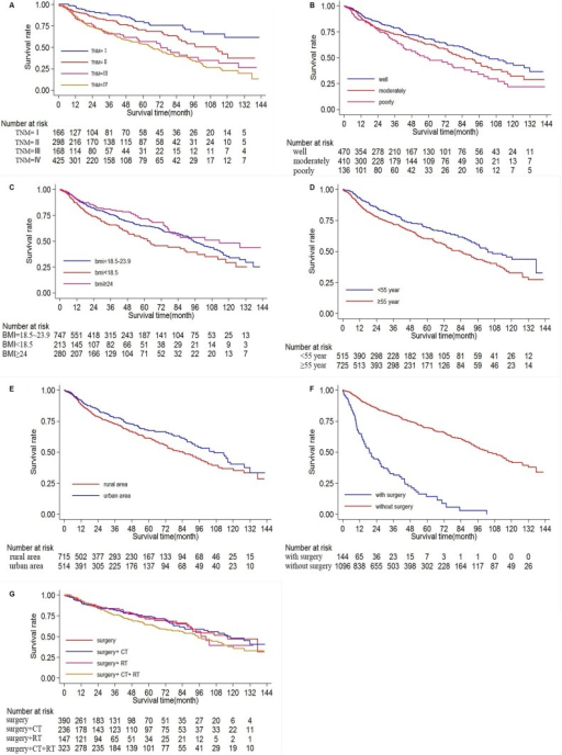 Ten-year survival of patients diagnosed with oral cance | Open-i