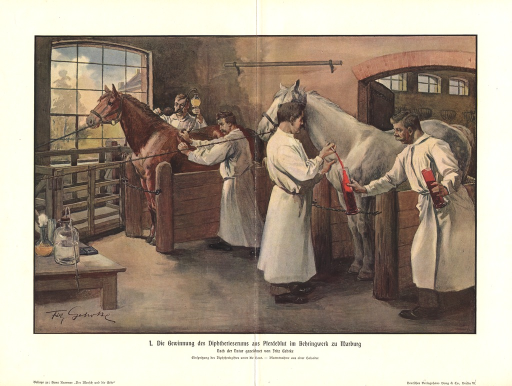 <p>Summary:  Four men in white smocks extract blood from two horses in a stable.</p>