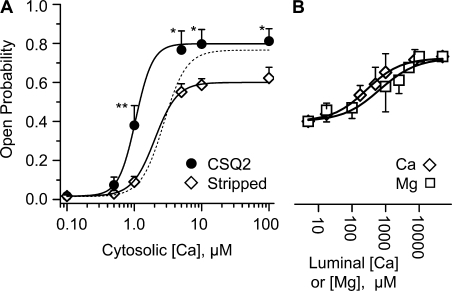 CSQ2 shifted the cytosolic Ca2+ sensitivity of single RyR2 channels. Holding potential was 0 mV and the luminal solution contained 100 mM Cs+. (A) Summary Po results from CSQ2-stripped (open circles; n = 8) and CSQ2-replaced (filled circles; n = 6) channels. The CSQ2-replaced channels were associated with CSQ2-WT (0.5 μg/ml in luminal chamber). Luminal free Ca2+ concentration was 1 mM and cytosolic Ca2+ was titrated from 0.1 to 100 μM. The curve fit to the filled circles has an EC50 of 1.04 ± 0.17 μM and a 3.4 Hill coefficient. The curve fit to the CSQ2-stripped data has an EC50 of 2.01 ± 0.34 μM and a 2.6 Hill coefficient. An unpaired t test was used to determine if the Po between CSQ2-replaced and stripped channels at each Ca2+ concentration was statistically different (**, P < 0.01; *, P < 0.05). Dotted curve represents the cytosolic Ca2+ sensitivity of CSQ2-stripped channels when 10 mM luminal Ca2+ was present. (B) Luminal Ca2+ and Mg2+ sensitivity of CSQ2-stripped channels. These stripped channels were maximally activated by high cytosolic Ca2+ (100 μM) and then luminal Ca2+ (open diamond; n = 13) or Mg2+ (open square; n = 16) was varied. The curve fit to the Ca2+ data has an EC50 of 379 ± 247 μM and a 0.70 Hill coefficient. The curve fit to the Mg2+ data has an EC50 of 972 ± 208 μM and a 0.77 Hill coefficient.