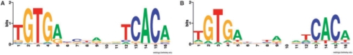 Sequence logo of the predicted CrpMT binding sites (A) in comparison to the sequence logo of GlxR (B). The sequence logo models the binding site motif of CrpMT. It was deduced from the predicted binding sites in Table 3. The height of each letter within an individual stack represents the nucleotide's frequency relative to the particular motif position; thus, the degree of a nucleotide's conservation is indicated by the stack according to the respective position.
